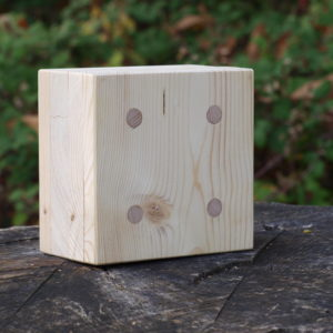 Bild einer Thoma-Holz100 Massivholzwand
